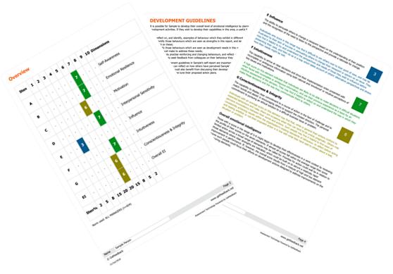 EIQ-M Sample Report