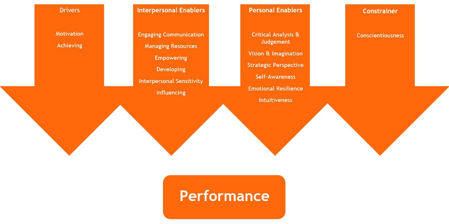 Leadership Dimensions Questionnaire 15 Dimensions