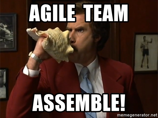Agile Leaders